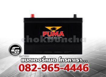 ราคาแบตเตอรี่รถยนต์ Puma 115D31L SMF Front