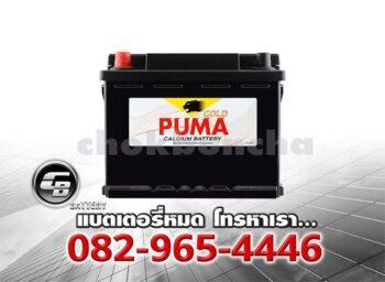 ราคาแบตเตอรี่รถยนต์ Puma DIN50 55016 SMF Front