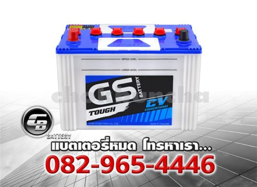 GS Battery GT195R BV