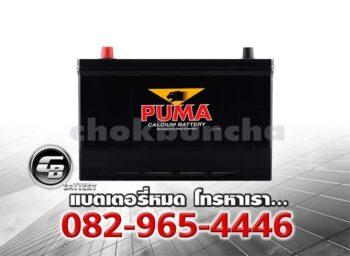 Puma Battery 130D31L (PB210L) Front
