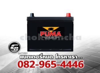 Puma Battery 55D23R SMF Front
