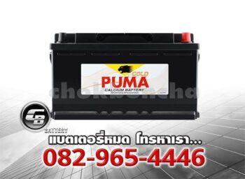 Puma Battery DIN100 60038 SMF Front