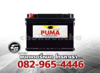 Puma Battery DIN55R 55548 SMF Front