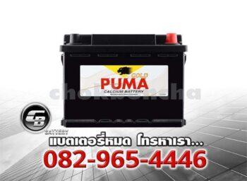 Puma Battery DIN62 56219 SMF Front